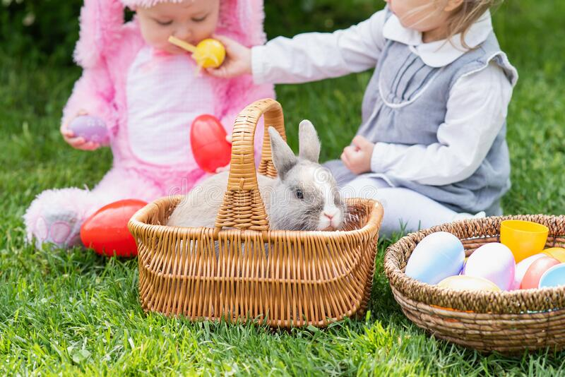 Children play with real rabbit. Laughing child at Easter egg hunt with pet bunny royalty free stock photography