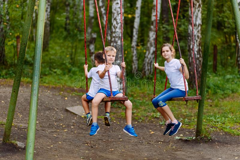 Children play on the swings in the summer royalty free stock photo