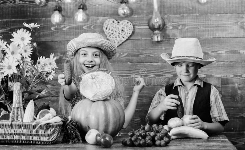 Children play vegetables pumpkin cabbage. Kids girl boy wear hat celebrate harvest festival rustic style. Celebrate stock photo