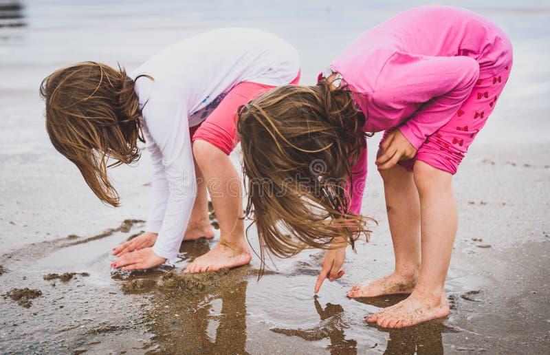 Children playing barefoot sandy beach of Atlantic ocean in Spain stock image