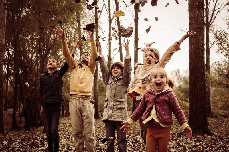 Children playing in fall leaves. stock image