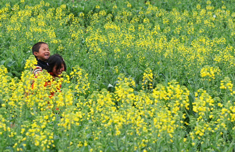 Children playing in the flower field stock image