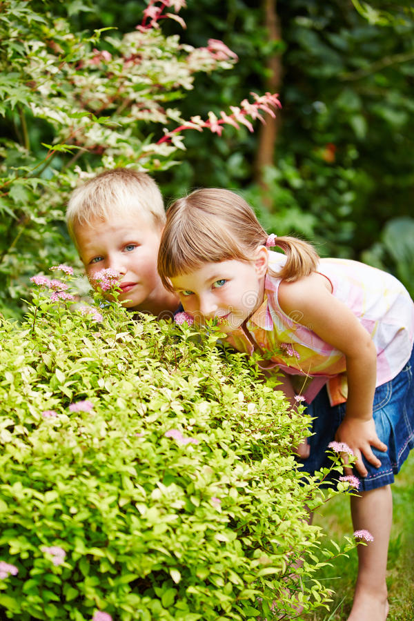 children playing hide and seek in garden stock image