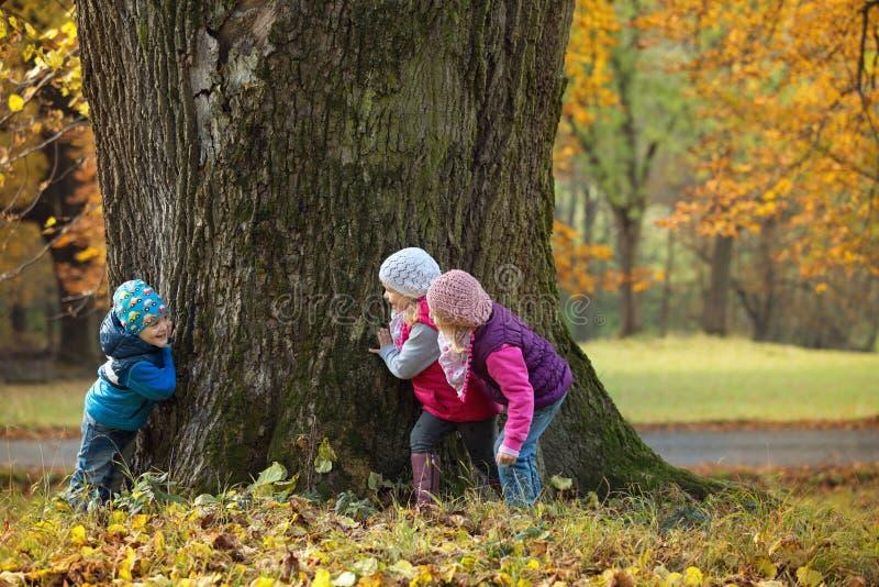 Hide Seek Kids: Children Playing Hide And Seek Stock Image