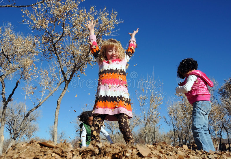 Download Children Playing In The Leaves Stock Image - Image: 7965255