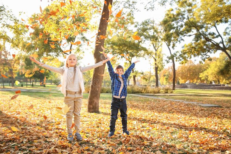 Children playing with leaves in autumn park royalty free stock photo