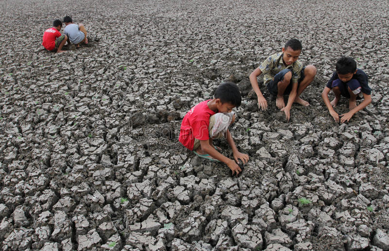Children playing in the rumen Kerto Sragen, Central Java Indonesia. Dry season makes elevation the reservoir is reduced so that the children used to look for royalty free stock images