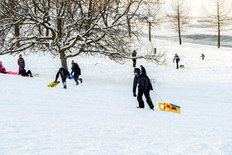 Children Playing With Snow After Snowfall On Winter Day In Tineretului Park Of Bucharest royalty free stock images