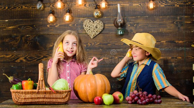 Children presenting farm harvest wooden background. Reasons why every child should experience farming. Held responsible. For daily farm chores. Kids farmers royalty free stock photos
