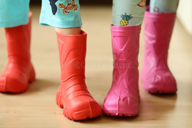 Download Children In Rainboots Colourful Wear Pretty Cool And Umbrellas  Stock Photo   Image Of Gift
