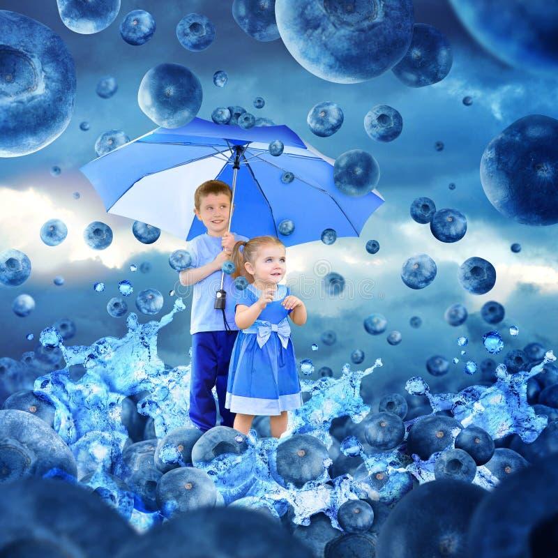 Children In Raining Blueberries With Umbrella Stock Photo