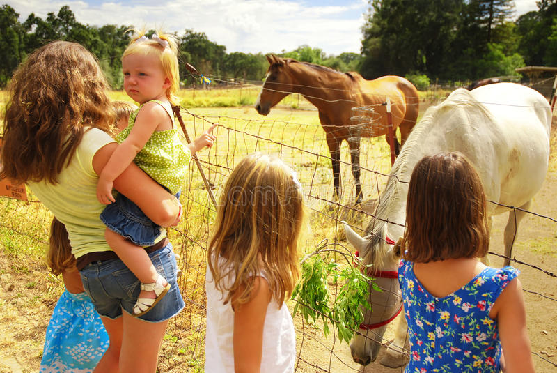 Children at Ranch. Five caucasian children visiting injured horse on farm stock photo