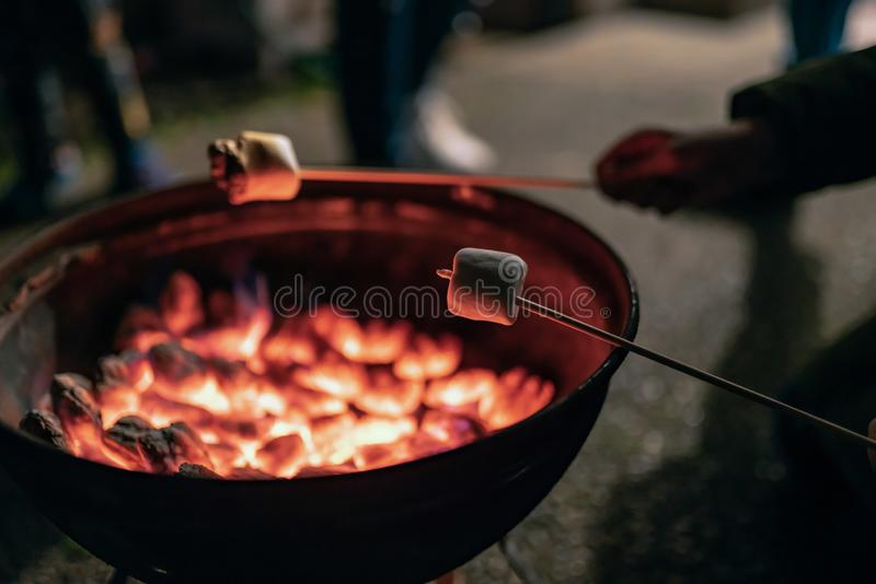 Children roasting marshmallows on skewers stock photos