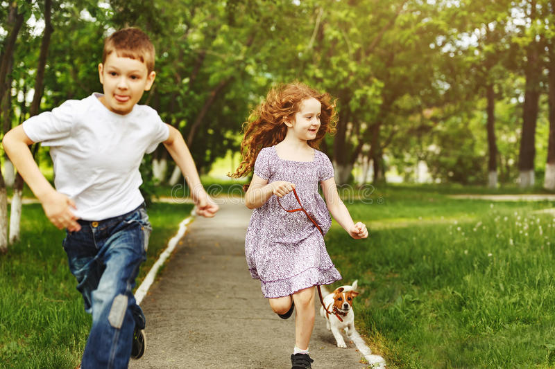 Children run in a park with a puppy dog. Boy and girl run in a park with a puppy jack russell terrier stock image