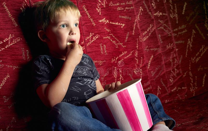 Children`s cinema: A little boy is watching a movie in the dark in a red armchair and eating popcorn. royalty free stock photos