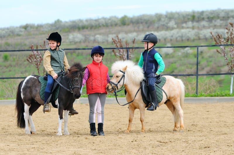 Children's equestrian royalty free stock photo