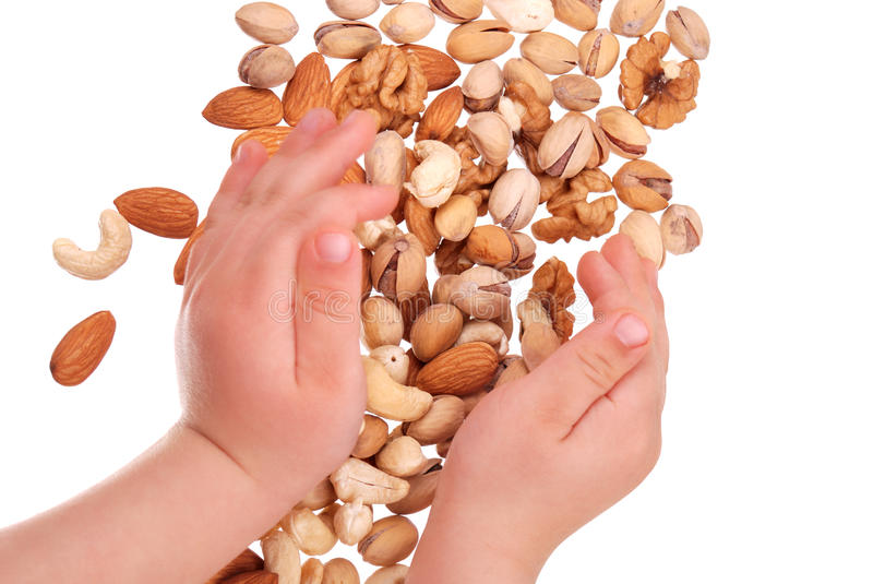 The children's hand holds nuts stock photos