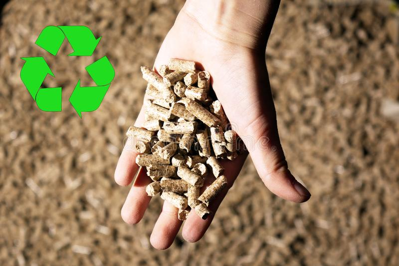 children`s hand and recycle sign with natural wood pellet stock photos