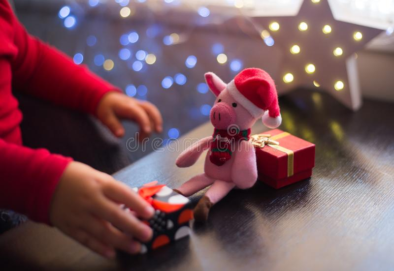 Children`s hands holding gift box near toy pig in Santa hat with garland bokeh background indoor at home. royalty free stock photography