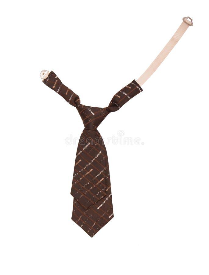 Children`s necktie, brown necktie for a boy, royalty free stock images