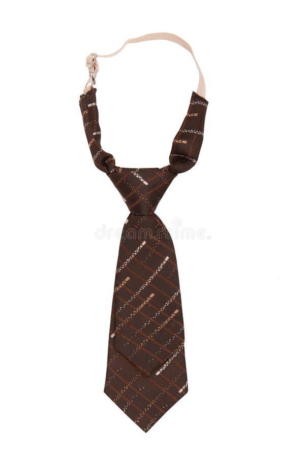 Children`s necktie, brown necktie for a boy, stock photos