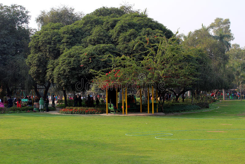Children`s park, New Delhi, India stock images