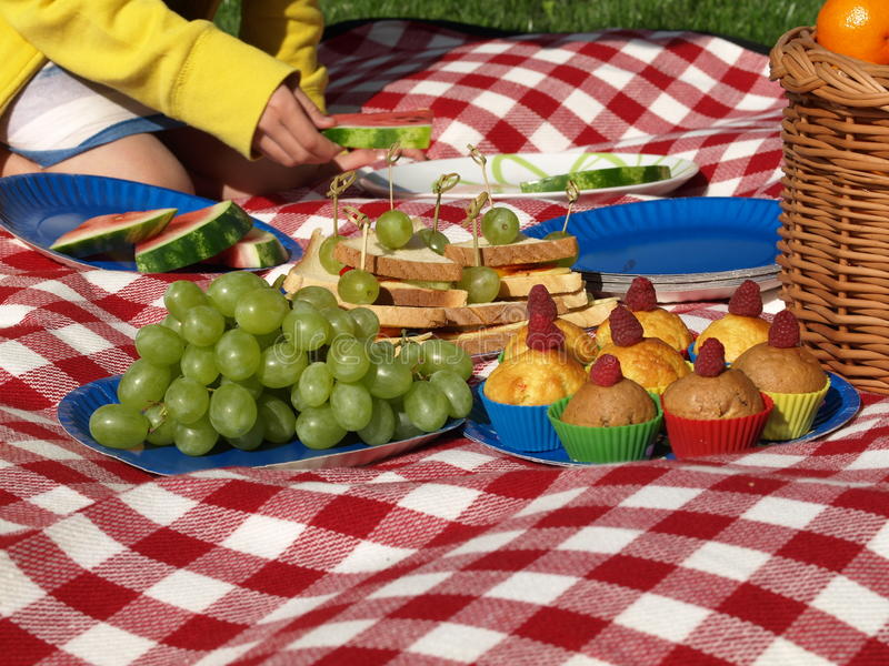 Children S Picnic Royalty Free Stock Photography