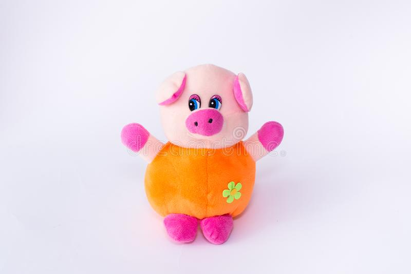 Children`s soft toy pig, cute pig on a white background royalty free stock images