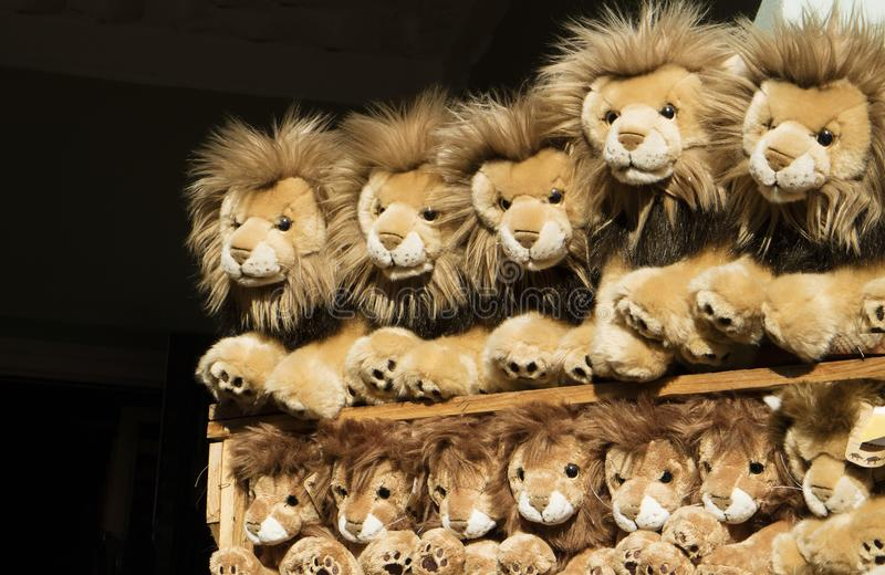 Children`s stuffed lion toys on a shelf. Toy lions on a display shelf in a children`s shop royalty free stock images