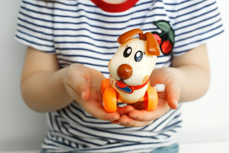 Children`s toy dog in the hands of a child stock image