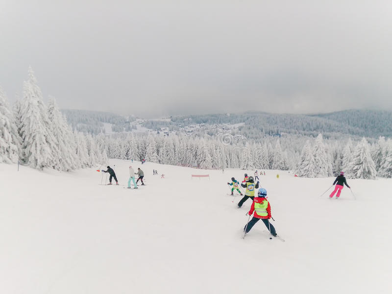 Children and some adults on the ski royalty free stock images