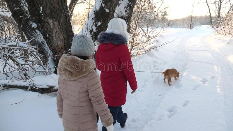 Children teens travel in winter in the park with a dog. two girls and dog and dog walk along path in winter park. Happy family walking their pet royalty free stock photo