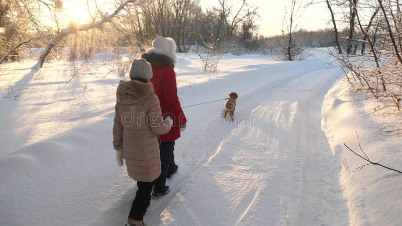 Children teens travel in winter in the park with a dog. two girls and dog and dog walk along path in winter park. Happy family walking their pet royalty free stock images