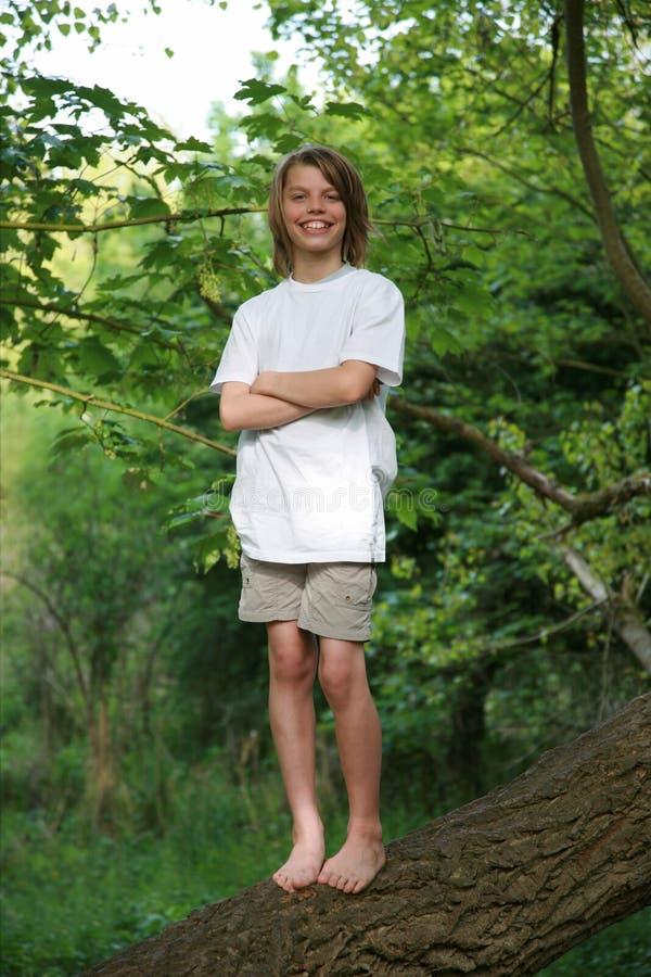 Children tree stock photography
