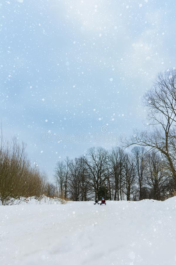 Children on two sledges descend from the hills royalty free stock photo