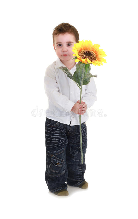 Children woth sunflowers. Isolated on white background royalty free stock photography