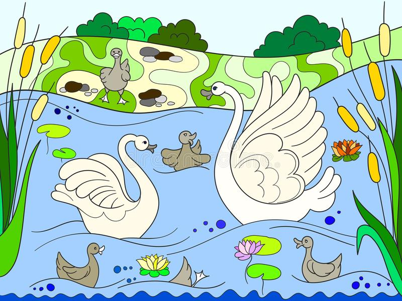 Childrens Color Book Cartoon Family Of Swan On Nature. Stock Vector ...