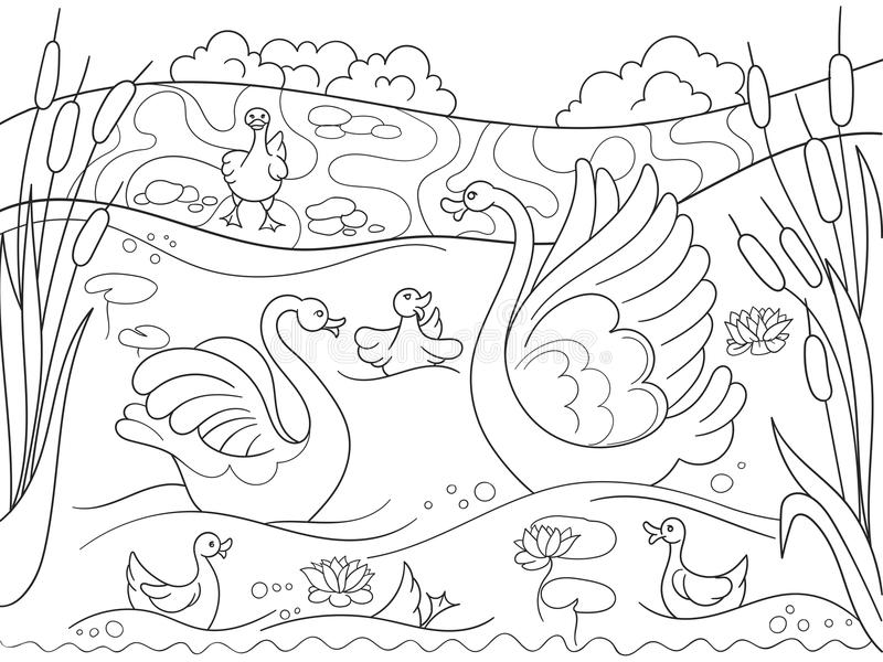 Childrens coloring book cartoon family of Swan on nature. vector illustration