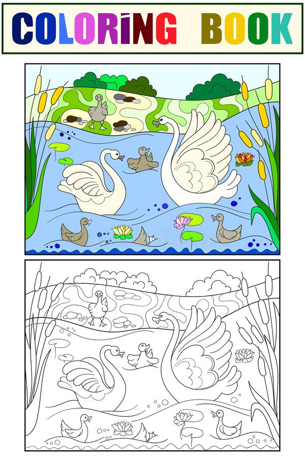 Childrens coloring book and color cartoon family of Swan on nature. royalty free illustration