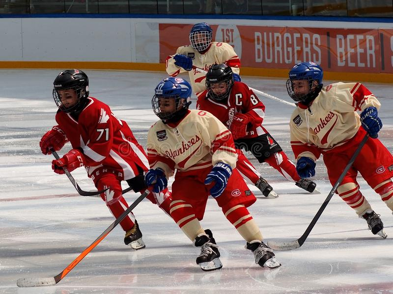 Childrens` Hockey Game Between Two Teams stock photography