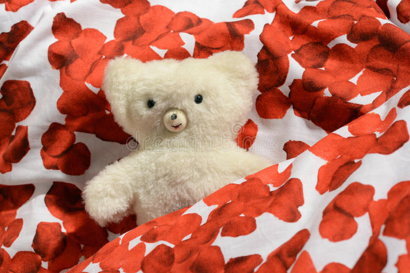 Childs teddy bear. Childs cuddly little white plush teddy bear nestling in colourful material patterned with bright red flowers stock photos