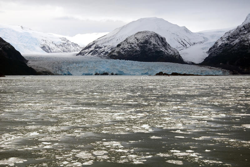 Chile - Amalia Glacier Landscape royaltyfri fotografi