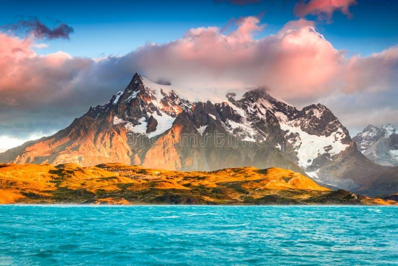 chile del paine patagoniatorres royaltyfria bilder