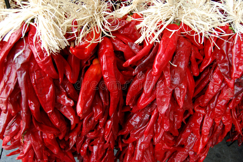 Download Chile Ristras stock image. Image of mexico, festive, seasonal - 3293647