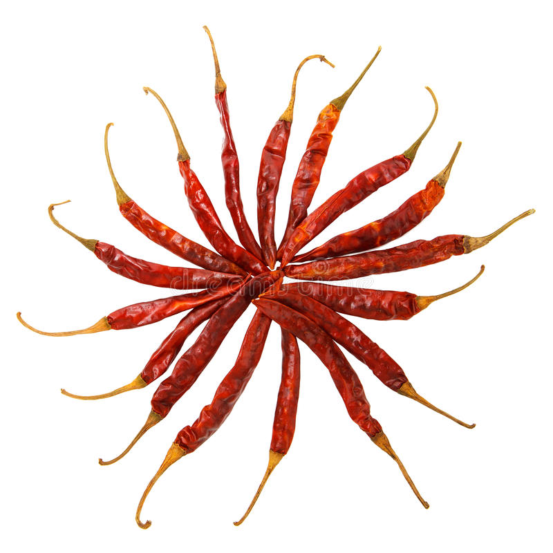 Chile rojo secado imagen de archivo