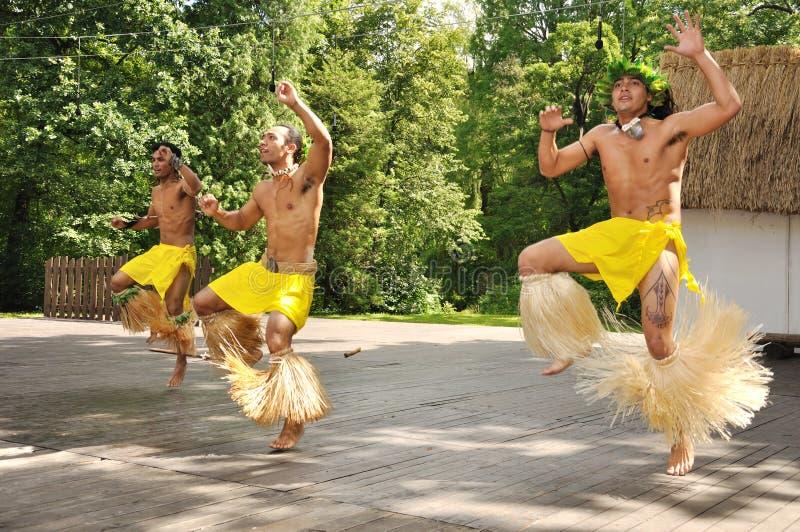chile tancerzy nui rapa dziki obraz royalty free