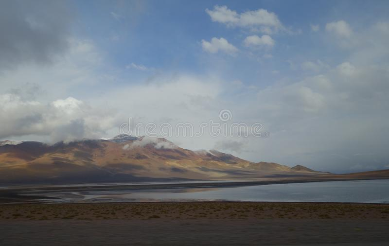 chilensk öken fotografering för bildbyråer