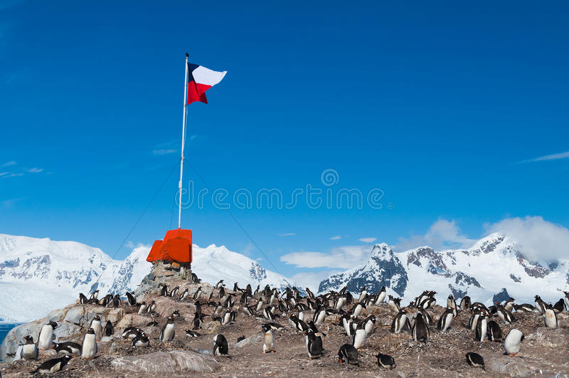 Chilenskt flyg för grundAntarktis flagga arkivbilder