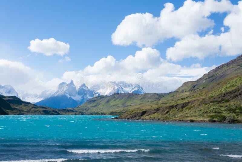 Chilenskt Patagonialandskap, Torres del Paine nationalpark royaltyfria bilder