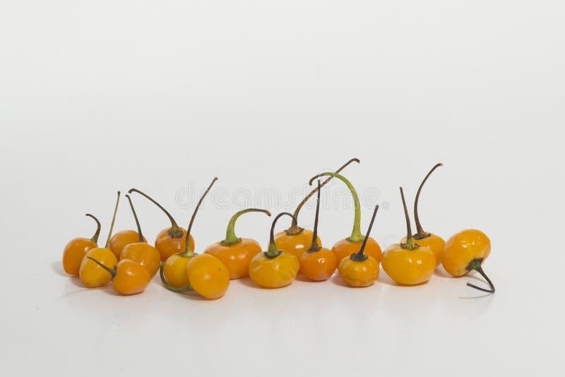 Chiles de Charapita, chile de la cereza - pequeño chile realmente caliente imagenes de archivo